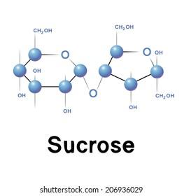 Sucrose molecule structure, biochemistry, chemistry, raster illustration.