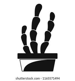 Suculent cactus pot icon. Simple illustration of suculent cactus pot icon for web design isolated on white background