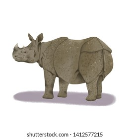 Sumatran Rhino Animal realistic illustration