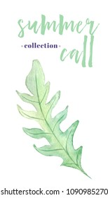 Summer call collection.  Watercolor element in white background. Botanical illustrations. isolated element.  floral elemnt for your design.