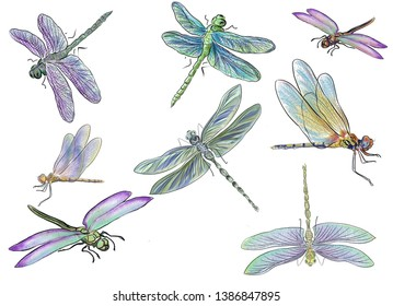Summer, dragonflies, water.  Light breeze over the pond, and a flock of dragonflies flies.  It can be seen only as the wings shimmer in the sun. Pattern.