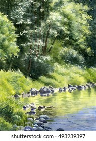 Summer Forest Reflections.  Watercolor painting, illustration, of trees reflected in a stream.