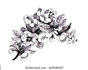 Summer garden blooming flowers monochrome  illustration