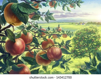 Summer landscape with apples branch, view through the branches of an apple tree with fruits. Digital painting.