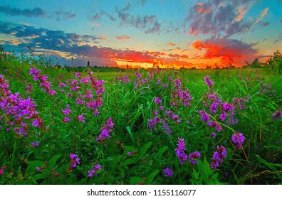Summer landscape in a field with flowers at sunset in oil paints. Digital structure of painting