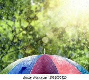 Summer rain on colorful umbrella 3D Rendering, 3D Illustration