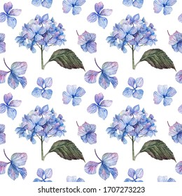 Summer seamless pattern of blooming blue hydrangea.Suitable for packaging wedding or invitation cards, stickers, stationery, textiles, fabric.Botanical illustration.