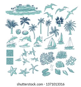 Summer set tropical plants marine and water animals. Island with palm among ocean, different dolphins seagulls fish and other underwater inhabitants. Monochrome sketch illustration collection. Raster