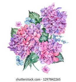 Summer Watercolor Vintage Floral Greeting Card with Blooming Hydrangea, Watercolor botanical natural hydrangea Illustration isolated on white background