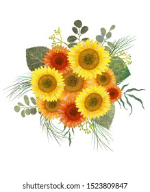 Sunflower bouquet with eucalyptus leaves isolated on white. Sunflower  illustration