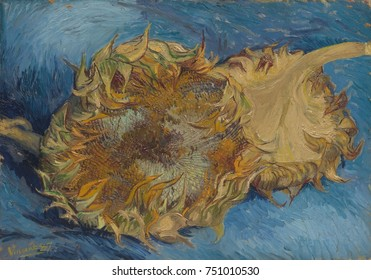 Sunflowers, by Vincent Van Gogh, 1887, Dutch Post-Impressionist, oil on canvas. The strong contrast of complementary colors, orange and blue, is amplified by rhythmic impasto paint application