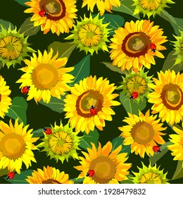 Sunflowers and ladybug seamless pattern