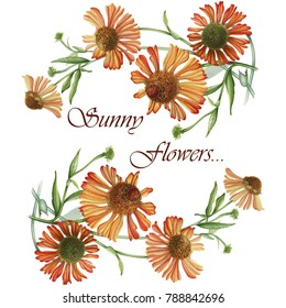 Sunny flowers. Botanical frame. Hand drawn illustration. Can be used for wedding, postcard. invitations, wall paper and other objects.