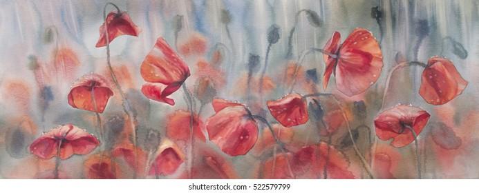 sunny poppies field