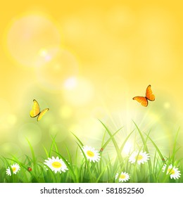 Sunny spring or summer day, two butterflies flying above the grass with flowers and ladybugs, illustration.