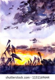 Sunset in the fields - watercolor illustration for your project