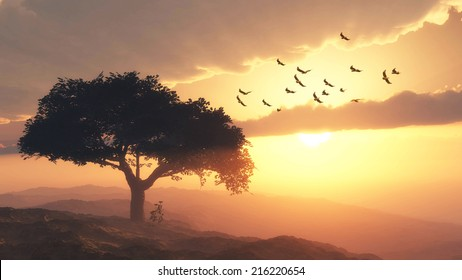 sunset time on the mountain with big tree and birds