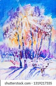 sunset in winterday, sun through branches of birches