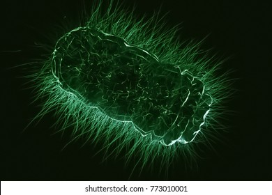 Superbug - Bacteria - Abstract 3D Illustration