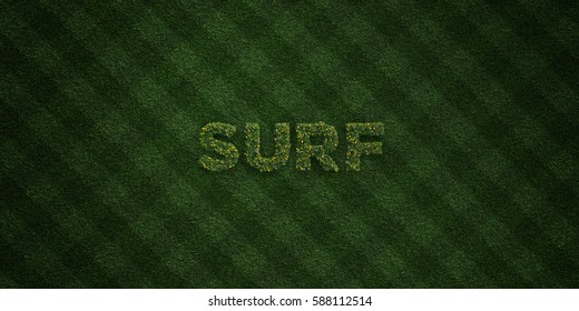 SURF - fresh Grass letters with flowers and dandelions - 3D rendered royalty free stock image. Can be used for online banner ads and direct mailers.