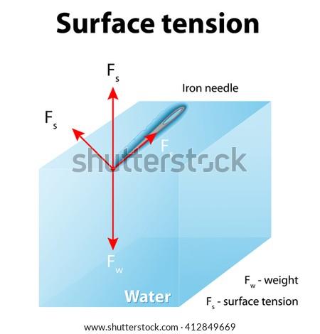Surface Tension Iron Needle Stay Atop Stock Illustration 412849669