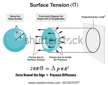 Surface Tension Physics Lesson Spherical Soap Stock Illustration