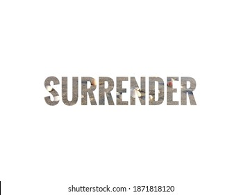 surrender text with white background