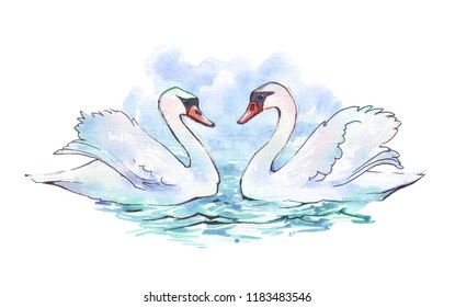 Swans on blue lake water watercolor