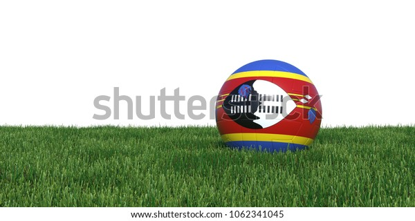 Swaziland flag soccer ball lying in grass, isolated on white background. 3D Rendering, Illustration.
