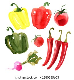 Sweet colored peppers, hot red chili peppers, cherry tomatoes, radishes painted with watercolor on a white background. A colored sketch of vegetables. Farm products.