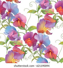 Sweet pea flowers seamless background pattern. Version 3