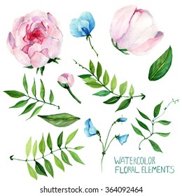 sweet pea,peony, handmade,Colorful floral collection with watercolor, Set of floral elements for your compositions, flowers,flower with stem
