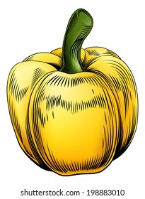 A sweet pepper vintage woodcut illustration in a vintage style