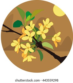 Sweet scented osmanthus
