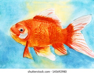 swim goldfish watercolor painting on paper