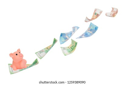 Symbol of 2019 pink pig on a two-ruble bill catching up with flying rubles. Financial with development and commit business concept. Victory and success from patience- Image.