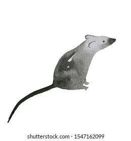Symbol of Chinese New Year 2020. A rat on a white background. Watercolor mouse grey