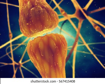 Synaptic transmission is the biological process by which neurotransmitters are released by a neuron and activate the receptors of another neuron , Human brain nerve cells structure , 3d illustration