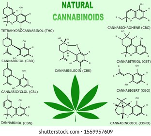 Table of natural cannabinoids with a leaf of marijuana