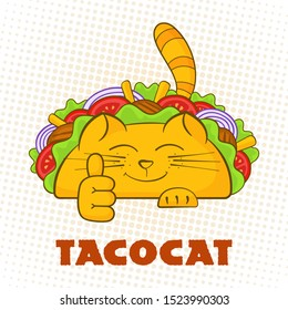 Taco cat cheerful character fast food taco symbol illustration. Satisfied cat mascot with tasty beef meat, salad and tomato in mexican taco with sign Tacocat for social media promotion