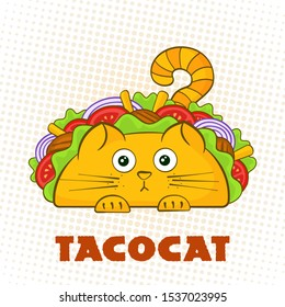 Tacocat surprised character fast food taco symbol illustration. Puzzled cat mascot with tasty beef meat, salad and tomato in traditional taco with sign Tacocat for social media promotion