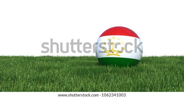 Tajikistan flag soccer ball lying in grass, isolated on white background. 3D Rendering, Illustration.