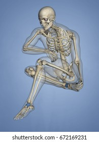 Talus Bone, 3D Model