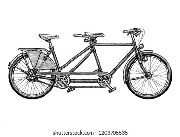 Tandem bicycle. Ink hand drawn illustration of twin bike in vintage engraved style.
