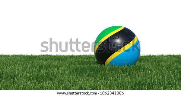 Tanzanian Tanzania flag soccer ball lying in grass, isolated on white background. 3D Rendering, Illustration.