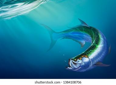 Tarpon big fish on background. The Elopiformes on depth background realistic illustration.