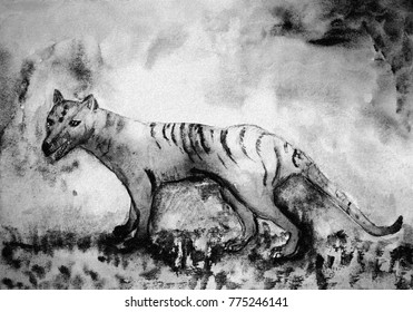 Tasmanian tiger in black and white. The dabbing technique near the edges gives a soft focus effect due to the altered surface roughness of the paper.
