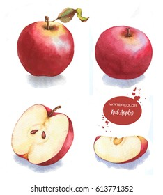 Tasty red watercolor apples. Hand drawn illustration of the isolated red apples on the white background. Autumn fruits harvest clip art for package design