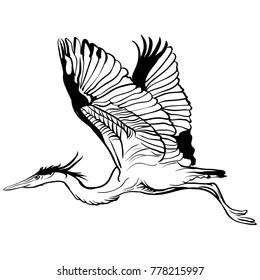 tattoo sketch flying stork illustration on white background.