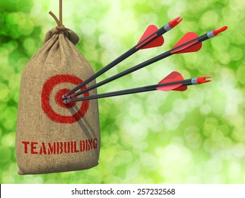 Teambuilding - Three Arrows Hit in Red Target on a Hanging Sack on Natural Bokeh Background.